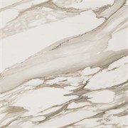 S.M. Calacatta Gold / С.М. Калакатта Голд 45  45x45 610010000651