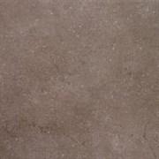 SG610500R Дайсен коричневый обрезной 60х60